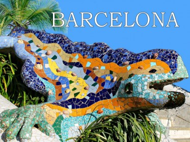 Barcelona Tour Other